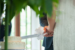 Cutting their wedding cake Stock Images