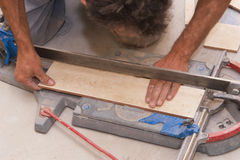 Cutting tiles. On the measure Stock Image