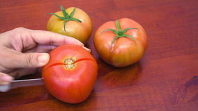 Cutting Tomatoes  stock video footage