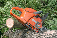 Cutting the tree. Cutting trees in the forest chainsaw Royalty Free Stock Images