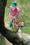 Cutting Tree Branch. A Man Cutting A Tree Branch With An Extension Pruning Saw Royalty Free Stock Photography