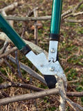 Tree cutting Royalty Free Stock Photos
