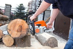 Cutting the tree Stock Photos