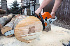 Cutting the tree Stock Images