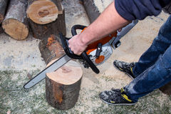 Cutting the tree Royalty Free Stock Photography
