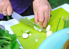 Cutting vegetables Royalty Free Stock Photos
