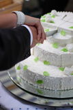 Cutting a wedding cake Stock Image