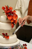 Cutting into wedding cake. A couple cutting into a wedding cake Royalty Free Stock Image