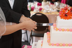Cutting wedding cake Royalty Free Stock Photo