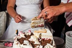 Cutting the wedding cake Royalty Free Stock Image