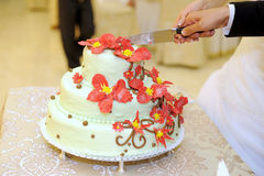 Cutting Wedding Cake Royalty Free Stock Photography
