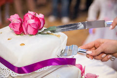 Cutting the wedding cake Stock Photos