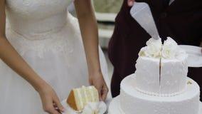 Cutting wedding cake stock video footage