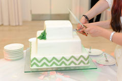 Cutting Wedding Cake Stock Photo