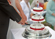 Cutting the Wedding Cake. Stock Photo