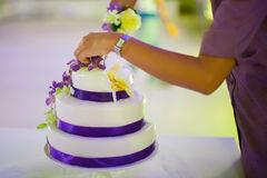 Cutting the wedding cake Royalty Free Stock Photo