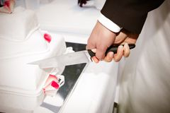 Cutting the Wedding cake Royalty Free Stock Photos