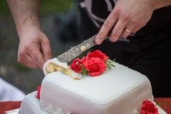 Cutting the wedding cake Stock Images