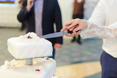 Cutting Wedding Cake Together Stock Photography