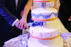 Cutting Wedding Cake Royalty Free Stock Image