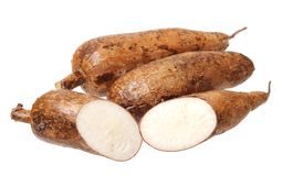 Cutting and whole manioc Stock Photos