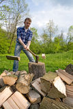 Cutting wood. Wide angle view of young men preparing firewood Royalty Free Stock Photography