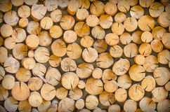 Cutting wood is arrange to be the natural wall Royalty Free Stock Images
