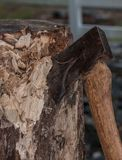 Cutting wood. Axe in a stump that has been chopped on. Chips cut tree fuels burn firewood cut handle iron steel sharp edge blade Royalty Free Stock Photo
