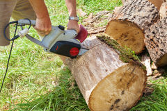 Cutting wood with chain saw. Royalty Free Stock Photo