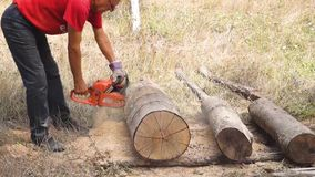 Cutting through wood with chainsaw. Close up stock video footage