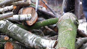 Cutting wood, chainsaw, gas, sawing, firewood stock video footage