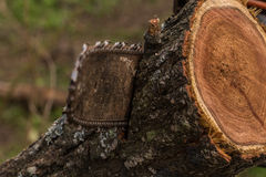 Cutting wood with chainsaw Royalty Free Stock Image