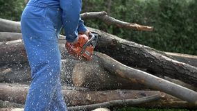 Cutting through wood on pile of logs in slow motion fall down stock footage