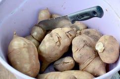 Cutting Yam or sweet potato Royalty Free Stock Photography