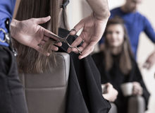 Cutting young woman's hair Royalty Free Stock Photo
