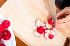 cuttingrädisor Arkivbild