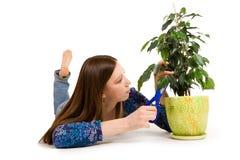 Cuttioninstallatie van de vrouw met blauwe schaar Stock Fotografie