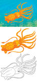 Cuttlefish. Illustration of a red cuttle swimming in blue water, color clip-art and black-and-white outline for a coloring page on a white background Stock Photography