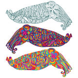 Cuttlefish camouflage cute line colorful Stock Photography