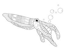 Cuttlefish Coloring vector for adults Stock Images