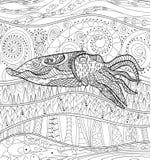 Cuttlefish Stock Illustrations