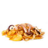 Cuttlefish octopus, mussels, shrimp and fried Stock Photography