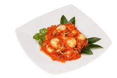 Cuttlefish with tomato sauce. In white dish Royalty Free Stock Images