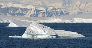 Cuverville Island Antarctica 6 Royalty Free Stock Photos