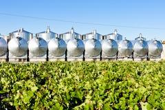 Cuves de fermentation photographie stock libre de droits