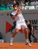 Cuvette 2012 d'équipe du monde de cheval de pouvoir de tennis Photos libres de droits