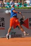 Cuvette 2012 d'équipe du monde de cheval de pouvoir de tennis Images libres de droits