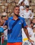 Cuvette 2012 d'équipe du monde de cheval de pouvoir de tennis Photo stock
