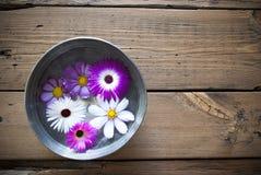 Cuvette argentée sur le fond en bois avec des fleurs de Cosmea Photographie stock libre de droits