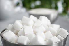 Cuvette avec des cubes en sucre raffiné image libre de droits